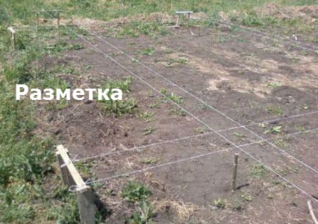 lentochnyiy fundament sruba 2